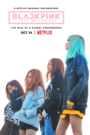 BLACKPINK: Light Up the Sky subtitrat în română